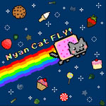 Nyan Cat Fly !